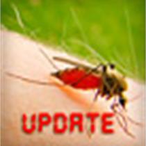 Content API Import Image_5406836317934865993