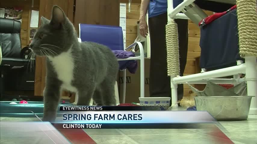 Spring Farm Cares_20160617014003