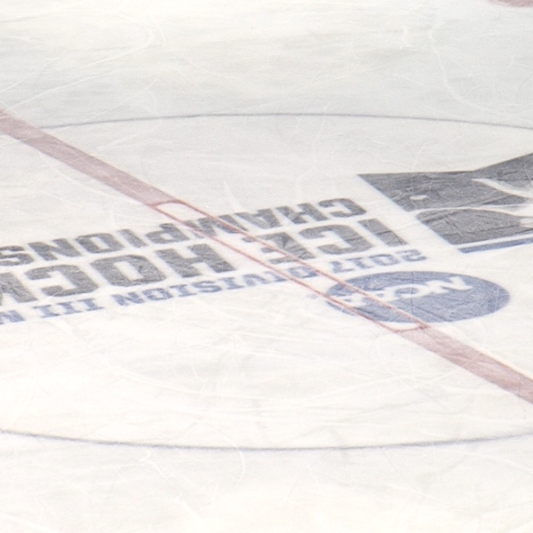d3 mens hockey championship
