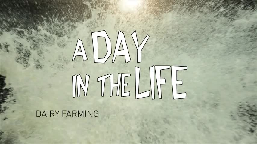 A Day in the Life of a Dairy Farmer_39420878