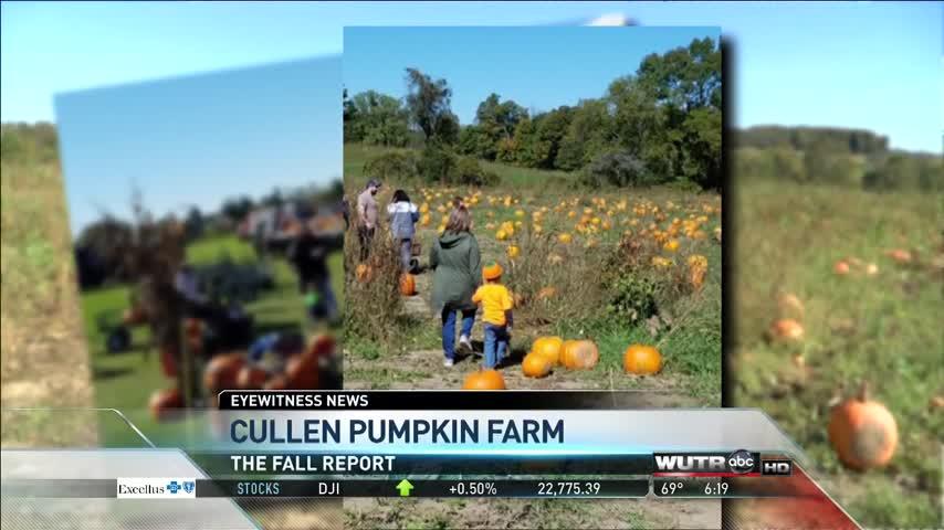 Fall Report 10/5