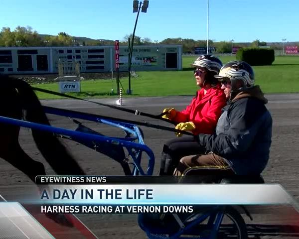 A Day in the Life- Harness Racing at Vernon Downs_77052807