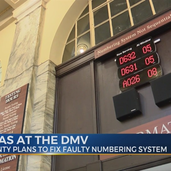 Dilemmas_at_the_DMV_1_20190112024435