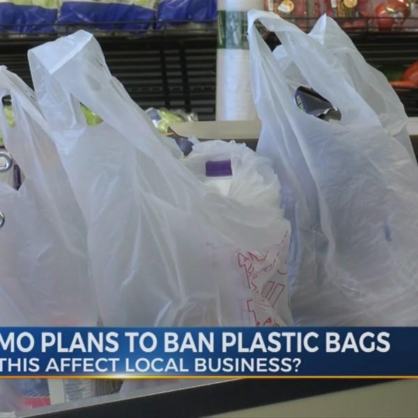 Gov. Cuomo plans to ban plastic bags
