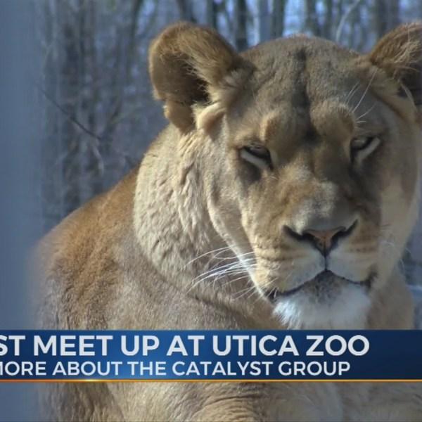 Catalyst_Meet_Up_at_Utica_Zoo_0_20190315233353